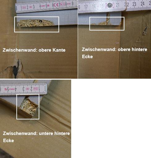 wimex kleiderschrank taiga eiche s gerau plankeneiche lava 715922 13539 ebay. Black Bedroom Furniture Sets. Home Design Ideas